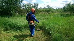 Покос травы, покос газона Костанай