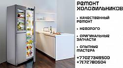 Ремонт холодильников Нур-Султан