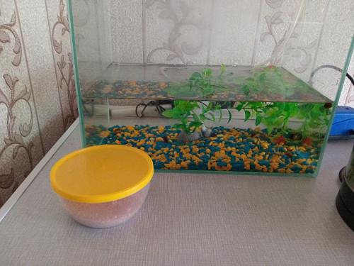 Продам аквариум Павлодар