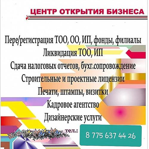Регистрация/ликвидация ТОО, ИП, Общественное объединение Шымкент