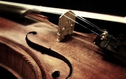 Скрипка онлайн Алматы