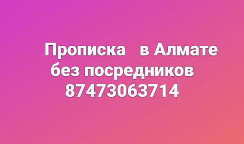 Пропишу в городе Алматы Алматы