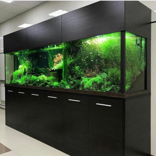 Изготовление аквариумов на заказ в Алматы Алматы
