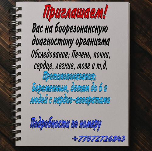 Биорезонансная диагностика организма. Сатпаев