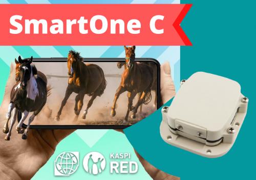 GPS трекер для лошадей, коров, крупного рогатого скота SmartOne C Алматы