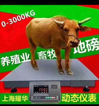 весы 3 тонна 1.5на1.5 Алматы